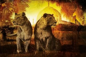 Golden-Lionesses-36by74-KA