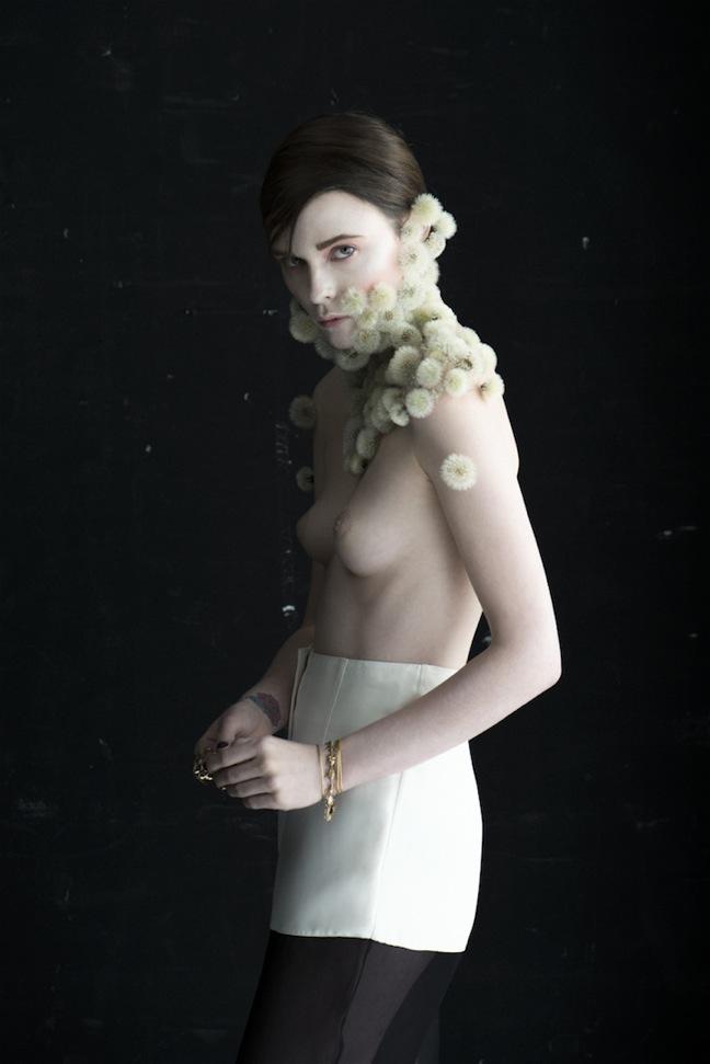 Dandelion-Isabelle-Chapuis_06