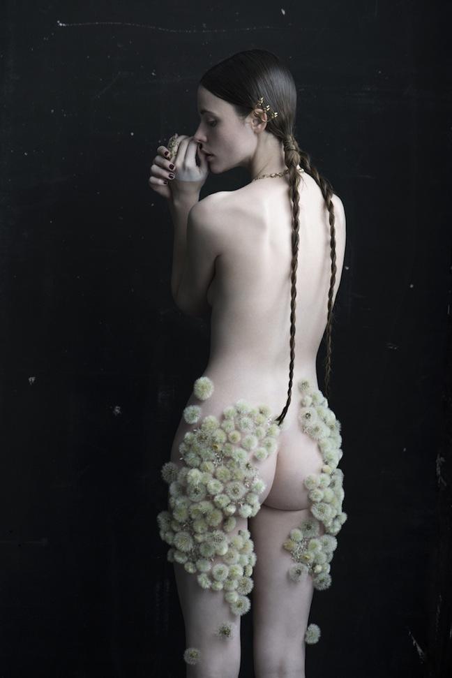 Dandelion-Isabelle-Chapuis_02